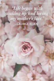 Love Quotes For Mother In Law Eurovianenet