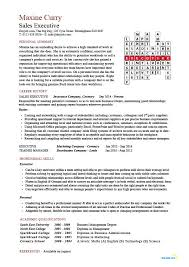 Sales Executive Cv Template Example Marketing Executive Revenue