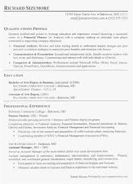 Financial Advisor Assistant Sample Resume Beauteous 48 Financial Advisor Resume Example New Best Resume Templates