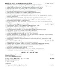 Free Resume Template Google Docs Resume Letter Collection