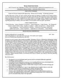 Cfo Sample Resume Cfo Cv Resume Sample Rimouskois Job Resumes 19