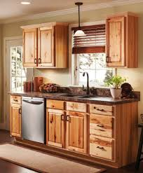 Online Kitchen Cabinets Beautiful Online Kitchen Cabinets Pbh Architect