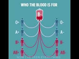 Blood Compatibility Chart For Marriage 74 Punctilious Blood Group Flow Chart