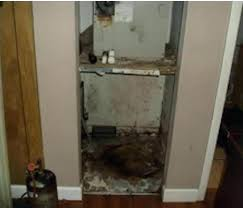 mold in closet moldy help for a plantation a c closet mold on shoes and clothes in mold in closet