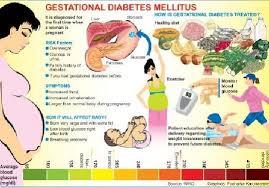 Type 1 Diabetic Bodybuilding Diet Plan Type 1 Diabetes