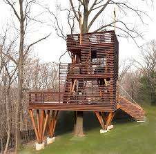 outdoor cat tree house inspired by a lantern contemporary kids diy outdoor cat tree house