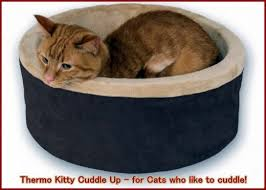 thermo kitty cuddle up