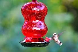 hummingbird ed glass feeder homemade diy bird mason jar s jewel window feeder diy hummingbird