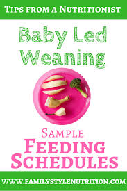 Baby Led Weaning Sample Feeding Schedules Family Style