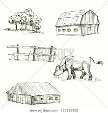 farm fence drawing. Hand Drawn Vector Illustration Of Farm, Cow, Fence, Trees, Grass. Sketch Farm Fence Drawing H