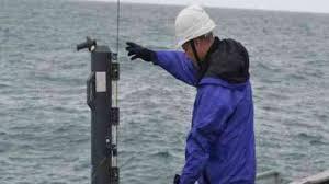 Правовое регулирование рыболовства в рф реферат Чертежи рефераты курсовые работы для всех Проблему правового регулирования вопросов эксплуатации ресурсов Мирового