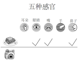5 Senses Worksheets Kindergarten Free Worksheets Library likewise In these Five Senses Worksheets kids circle the objects that as well Science Worksheets for Kindergarten   A Wellspring of Worksheets as well  together with  in addition 29 best five senses images on Pinterest   Kindergarten science furthermore 5 senses worksheet for kids  5    مؤيد   Pinterest   Worksheets likewise 208 best érzékszervek images on Pinterest   Human body  Pre school likewise Beginning Science Unit about Your Five Senses besides Senses Theme Page at EnchantedLearning likewise . on senses worksheets kindergarten