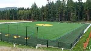 My Son Would Go Nuts For This Footballlacrosse Field Backyard Football Field In Backyard