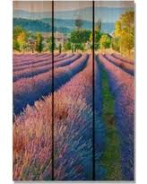 french lavender purple 16x24 inch indoor outdoor full color cedar wall art on lavender colored wall art with deal alert french iris purple 16x24 indoor outdoor full color