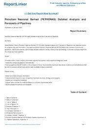 Petronas Company Analysis Term Paper Sample
