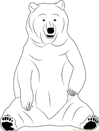 Small Picture Black Bear Sitting Coloring Page Free Bear Coloring Pages