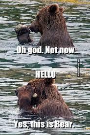 funny-beard-hello-meme | Bajiroo.com via Relatably.com