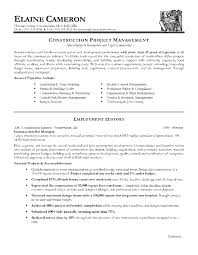 Construction Project Manager Resume Objective Resume For Study