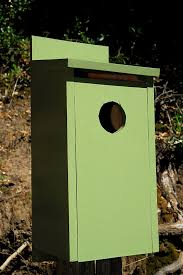 building owl boxes curbstone valley