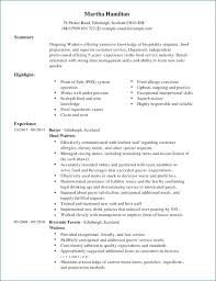 A Perfect Resume Example Adorable Example Of Perfect Resume Inspirational The Perfect Resume Example
