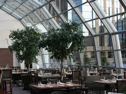 restaurant unions curiocity unions retractable rooftop opens monday wcco cbs