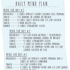 Meal Plans Baby Meal Plan Baby Food Storage How To Plan