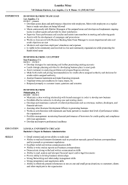 Business Banker Resume Business Banker Resume Samples Velvet Jobs 7