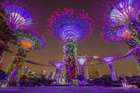 Gardens By The Bay Light Show Ticket 335047