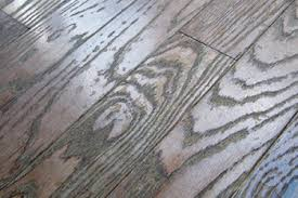 a prefinished solid wood floor damaged by repeated use of a steam mop cleaner