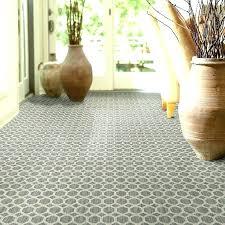 carpet rake carpets s good design nice cool elegant dog hair your rug best for pet