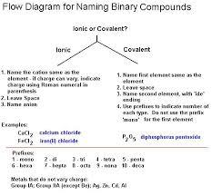 Nomenclature Flow Chart