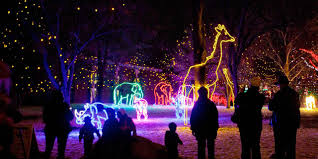 La Zoo Lights 2018 Tickets Zoo Lights Illuminated With Life Denver Zoo