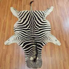 Zebra Skin for Rug ...
