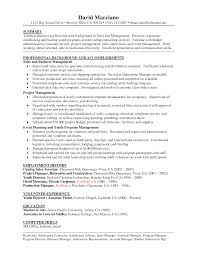 sales management sample resume by linzhengnd resume background summary examples 30052017 furniture sales resume