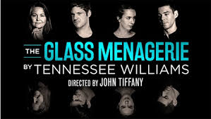 the glass menagerie at the duke of york s theatre the london cherry