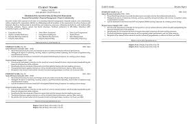 Formats Of A Resume Cool Sample Resume Professional Formats