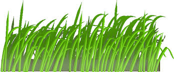 Small Picture Grass clipart Coloring Pages To Print