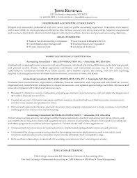 Tax Consultant Sample Resume | Nfcnbarroom.com