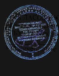 Темы дипломных работ pdf УТВЕРЖДАЮ Директор ГАПОУ РБ Бирский медико фармацевтический колледж