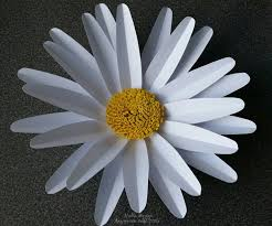 Daisy Paper Flower Paper Daisy Flower Patterns Magdalene Project Org