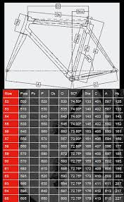 Colnago Eps Frameset Traditional Geometry Bicycle Pro