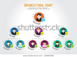 Business Chart Images Organizational Chart Corporation Business Hierarchy Vector