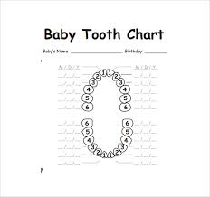 Teething Chart Babies Sample Teeth Chart Template 10 Free Documents Download In Pdf