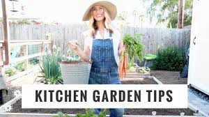 Kitchen Gardening Tips Tips To Start Grow A Kitchen Garden Diy Lifestyle Gardening