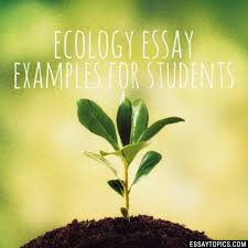 ecology essay topics titles examples in english  100% papers on ecology essay sample topics paragraph introduction help research more class 1 12 high school college