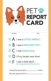 report card envelopes gift certificates with envelopes barkleigh store