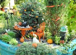 fairy garden container ideas. Fairy Garden Containers Ideas Mini Container Indoor . A