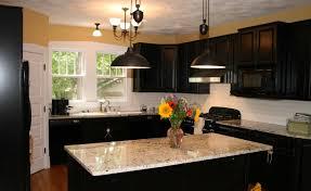 Kitchen  Kitchen Colors Dark Wood Cabinets Cheap Kitchen Cabinets Images Of Kitchen Interiors