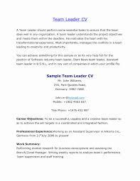 Resume Samples For Team Leader Position 24 Awesome Photos Of Team Leader Resume Format Bpo Resume Concept 7