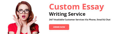 essay writing service com